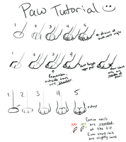 Simple Paw Tutorial by sotee