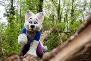A she wolf on the prowl~ by FurryFursuitMaker