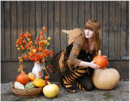Pumpkin Thief by Eirian-stock