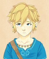 Link by SawksSomberCircus