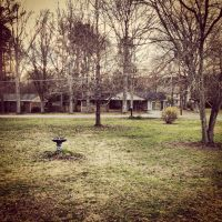 My Front Yard by Wigglesx