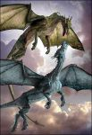 Taang colored dragons by DragonLover4Ever