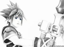 Kingdom Hearts III: Sora by Cate397