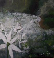 Wild Garlic by ArtCoursework