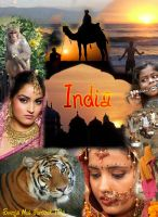 India Collage by Svennemi