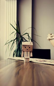 Danbo by mtnyrdr