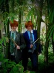 Weasley Twins: Bamboozled by modestlobster