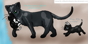 82. Riverside by AngelfurOfShadowclan