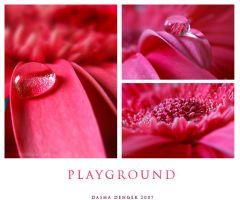 Playground by onixa