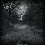 In the dark forest new serie 2 by CountessBloody