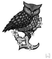 Owl Tattoo by Sheilakh