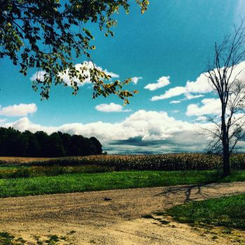 Country Life/Happy Life  by MandieLynn
