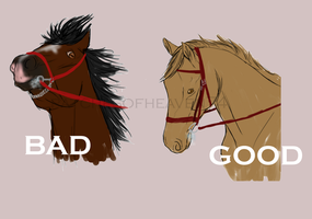 The good and bad --image examples by patchesofheaven74