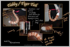 Tabby  Tiger Tail by Phantom--Wolf
