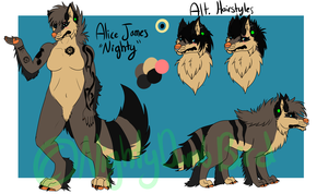 Ally 2014 Ref by Critical--Acclaim