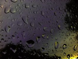 Like the touch of rain by SteflynPhotography