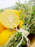 Meyer Lemon and Thyme by TreeseRB