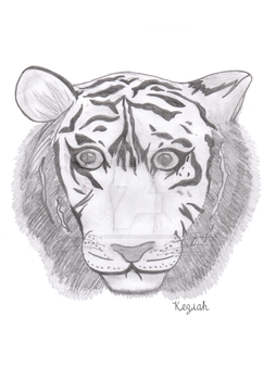 Wild Tiger by KeziahNutmeg