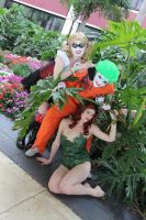 :DC: The Arkham Trio by AlouetteCosplay