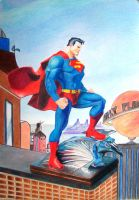 Superman Art Finish by Nathanm4