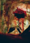 Red Rose by darklylit