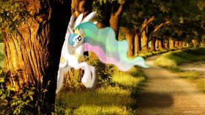 Celestia in the woods [PIRL] by colorfulBrony