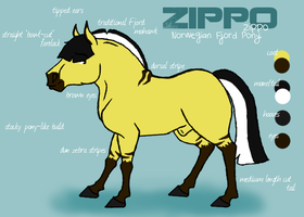 Zippo Reference - 2011 by camiif3tt