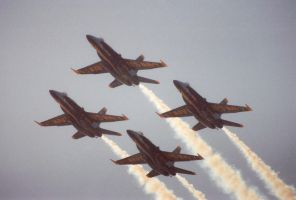 Blue Angels by slvice14