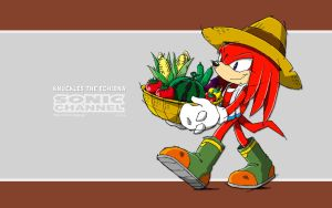 Knuckles the Echidna Wallpaper by bloomsama