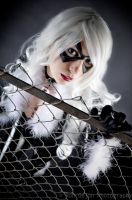 Black Cat Cosplay by RonGejon