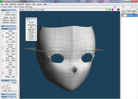 Face wip 1 by caio4856