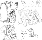 Small sketch dump by nightspiritwing