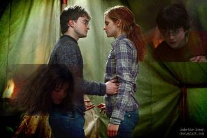 Harry / Hermione by Jade-the-lover