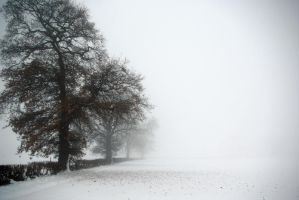 Winter in UK by spiritux