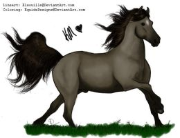 Grulla by EquideDesigns