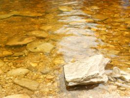 Golden water by PhotoLife9