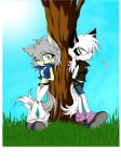 Ice the wolf and Karai fox :3 by Albioncheshire