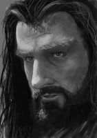 Thorin by pixelforger