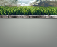 Wall and grass by lesa0208