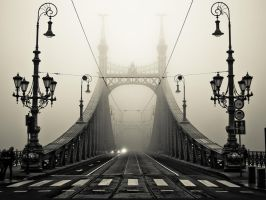 Liberty Bridge (Budapest) by ulsortes