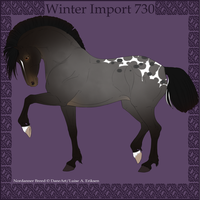 Winter Import 730 by Psynthesis