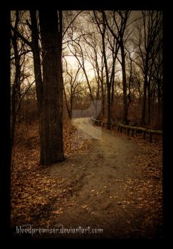 Curve in the Path by TwiggyTeeluck