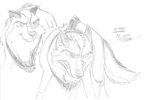 Kitara the wolfhound - sketches. 10 by MortenEng21