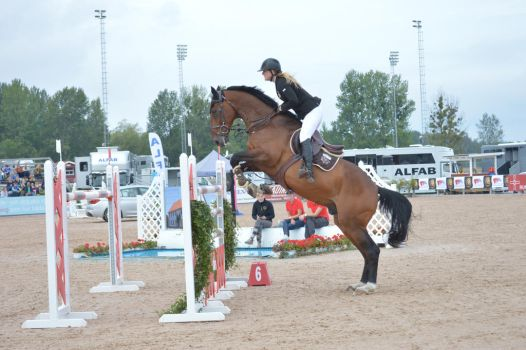 Show Jumping by AskebodaStock