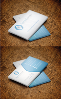 Business cards for desarrollosespeciales.com by artgh