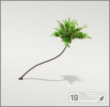 19 by centb