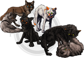 CM .:Wolf Pack:. by WhiteSpiritWolf