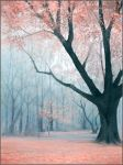Dreamscape Forest by jezebel