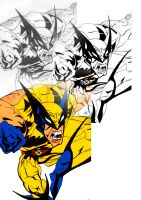 Wolverine by LordReserei
