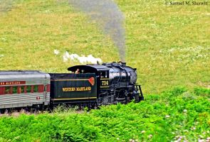 Western Maryland 734 over the curve by Aranimu